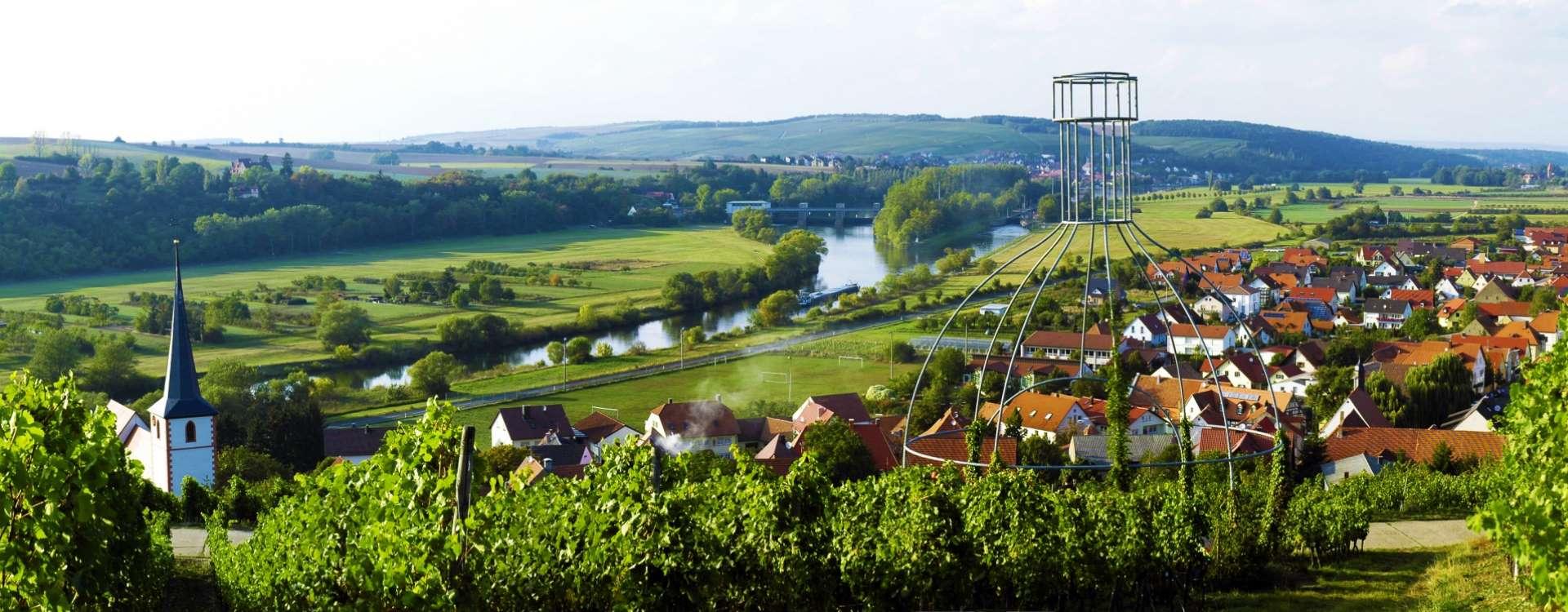 Blick vom Weinberg über den Fluss